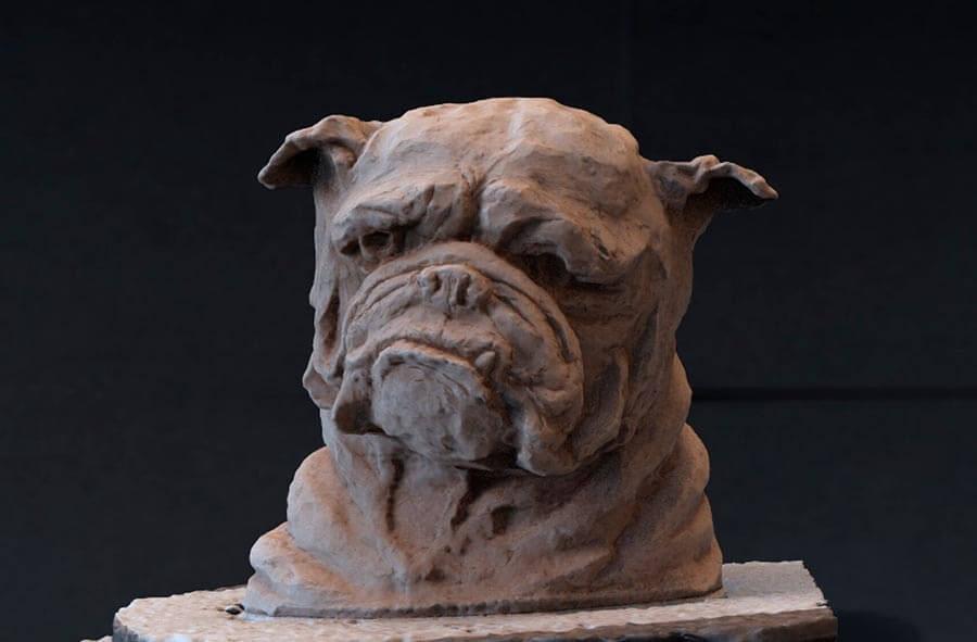 rendu 3D bulldog